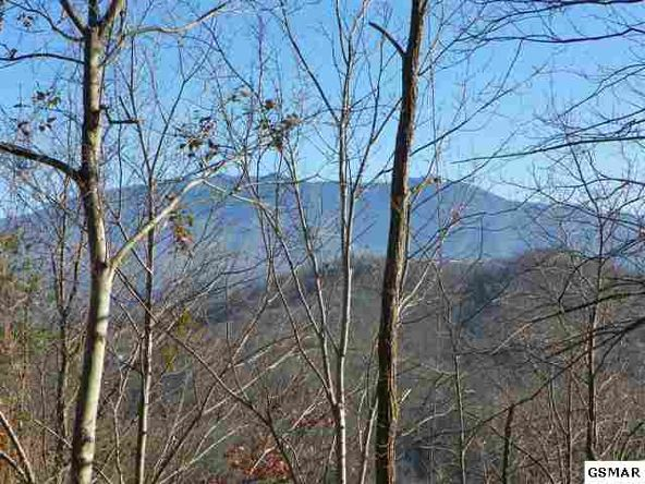 Lot 9 Enclave Park Way, Gatlinburg, TN 37738 Photo 10
