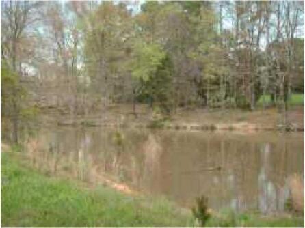Tr1 Bill Nelson Rd., Taylorsville, GA 30178 Photo 3