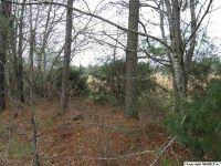 Home for sale: 000 Yellow Hammer Dr., Blountsville, AL 35031