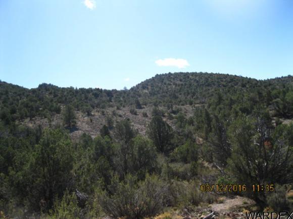 00 N. Willows Ranch Rd., Kingman, AZ 86401 Photo 11