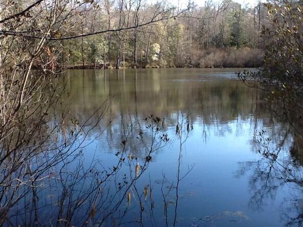 1 County Rd. 377, Opp, AL 36467 Photo 10