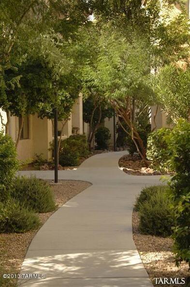 2550 E. River, Tucson, AZ 85718 Photo 11