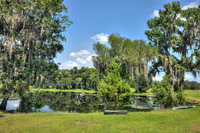 Home for sale: 14920 W. Hwy. 318, Williston, FL 32696