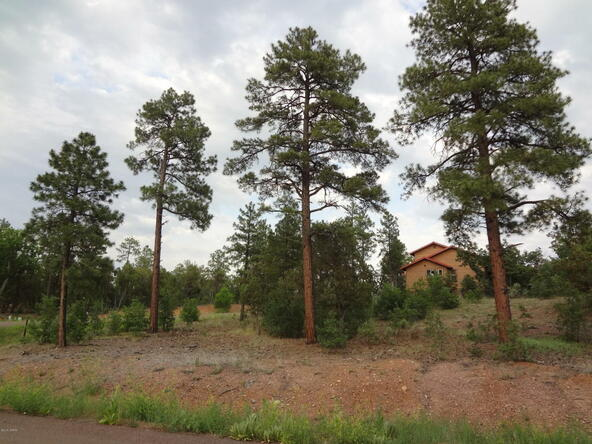 7227 Andromeda Way, Lakeside, AZ 85929 Photo 71