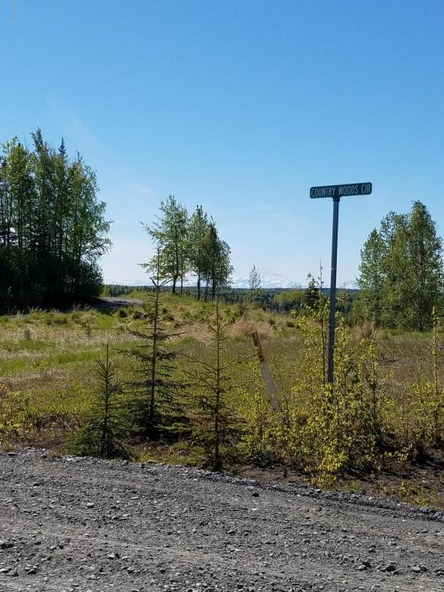37825 Country Woods Cir., Soldotna, AK 99669 Photo 14