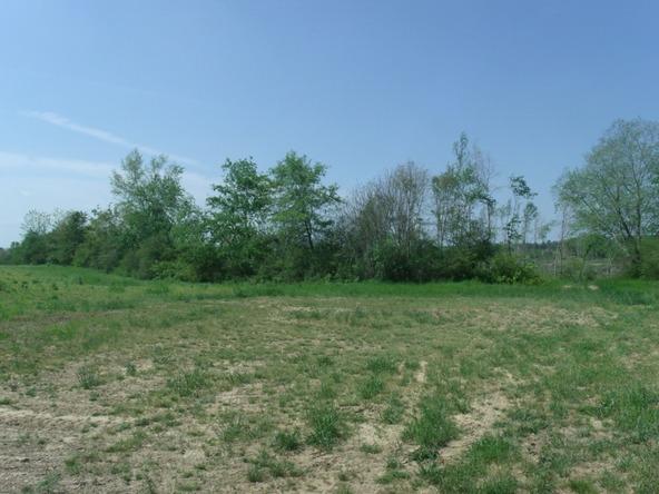 106 Ac County Rd. 1809, Joppa, AL 35087 Photo 2