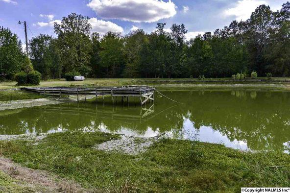 194 County Rd. 380, Decatur, AL 35603 Photo 47