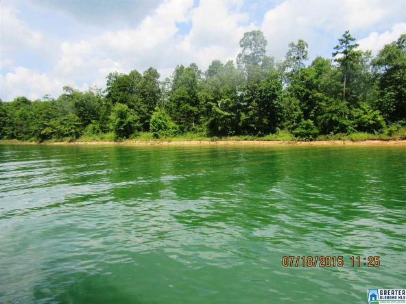 90 Stoney Point Landing, Double Springs, AL 35553 Photo 2