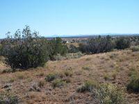 Home for sale: 7657 Butler Trail, Snowflake, AZ 85937