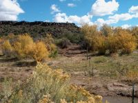 Home for sale: Tbd N. 12 Miles North On Hwy. 191, Springerville, AZ 85938