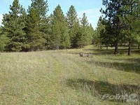 Home for sale: Rawlings Rd., Libby, MT 59923