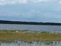 Home for sale: 175 Lake Shore, Pierson, FL 32180