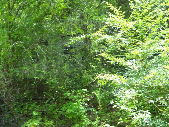 307 Marlin Jordan Rd., Carbon Hill, AL 35549 Photo 4