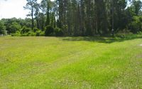 Home for sale: 441 Washington Blvd., Lake Placid, FL 33852
