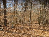 Home for sale: Lot 7 Roughshod Hollow, Rocky Top Rd., Byrdstown, TN 38549