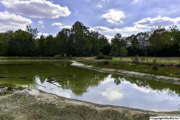 194 County Rd. 380, Decatur, AL 35603 Photo 48