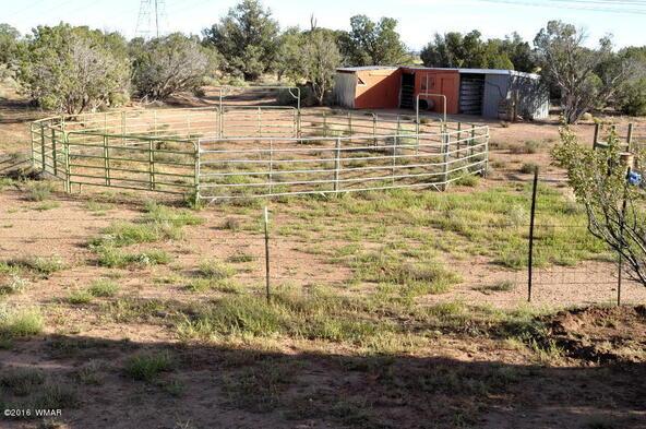129 N. County Rd. 9190, Concho, AZ 85924 Photo 52
