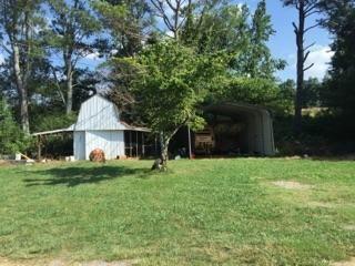 31159 Alabama Hwy. 71 Hwy, Bryant, AL 35958 Photo 41