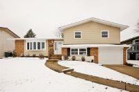 Home for sale: 6300 El Morro Ln., Oak Forest, IL 60452
