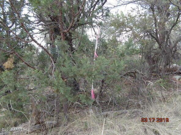 390 N. Ike Clark Parkway, Young, AZ 85554 Photo 14