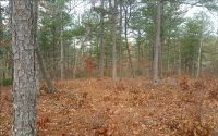 Home for sale: Lt 15 Brannon Ridge, Blairsville, GA 30512