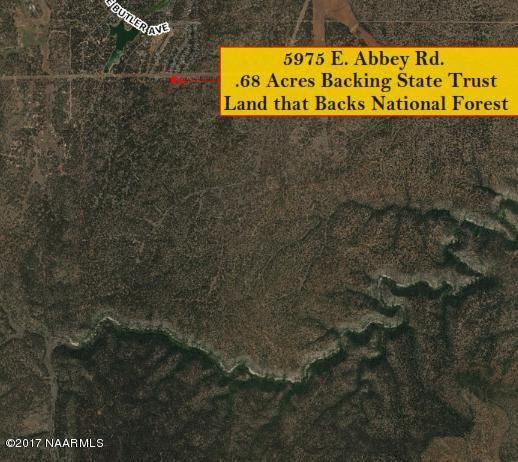 5975 E. Abbey Rd., Flagstaff, AZ 86004 Photo 58