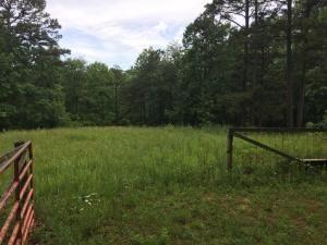 1594 Pine Crest, Summersville, MO 65571 Photo 23