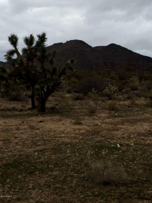 727 Kit Carson Rd., Yucca, AZ 86438 Photo 2