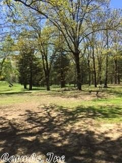 3 Ridgewood Ln., Searcy, AR 72143 Photo 37