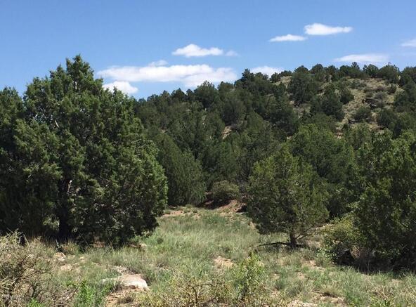 18875 N. Butte Pass Rd., Prescott, AZ 86305 Photo 4