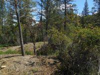 Home for sale: 11375 Deer Creek Ln., Nevada City, CA 95959