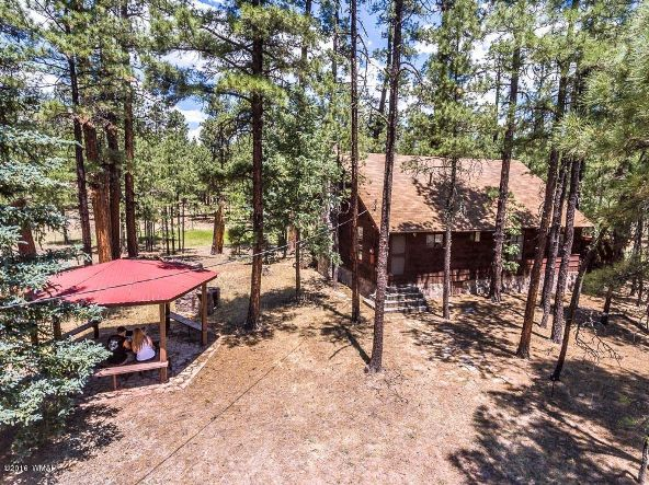 19 County Rd. 2082, Alpine, AZ 85920 Photo 5