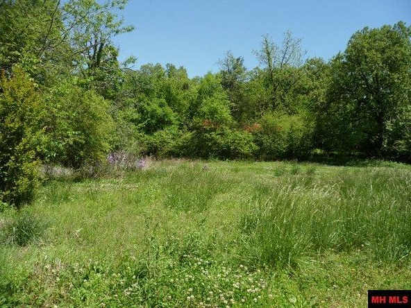 2706 Hwy. 5 North, Mountain Home, AR 72653 Photo 2