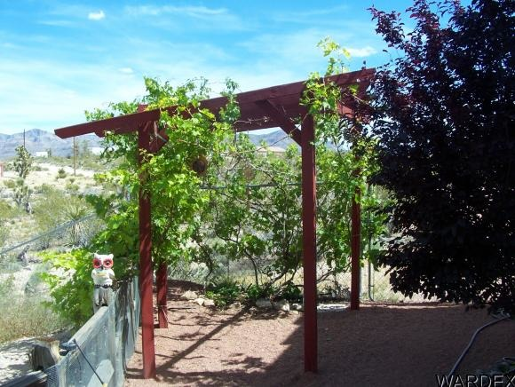 407 Overton Dr., Meadview, AZ 86444 Photo 3