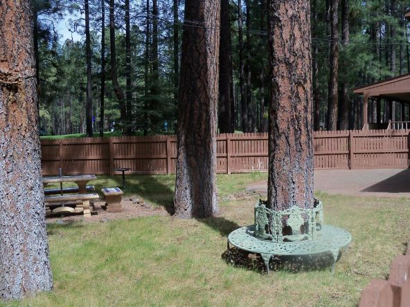 3100 Lake View Dr., Pinetop, AZ 85935 Photo 62