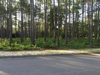 Home for sale: 14 Melfort Dr., Pinehurst, NC 28374