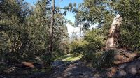 Home for sale: Jawbone Canyon, Weldon, CA 93283