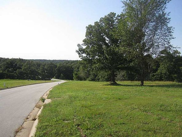 3984 Dogwood Canyon Loop N., Fayetteville, AR 72704 Photo 3