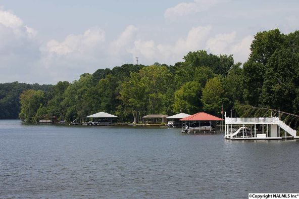 1102 Riverfront Rd., Rogersville, AL 35652 Photo 22