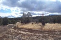 Home for sale: Lot 5 W. Shumway Equestrian Est, Taylor, AZ 85939