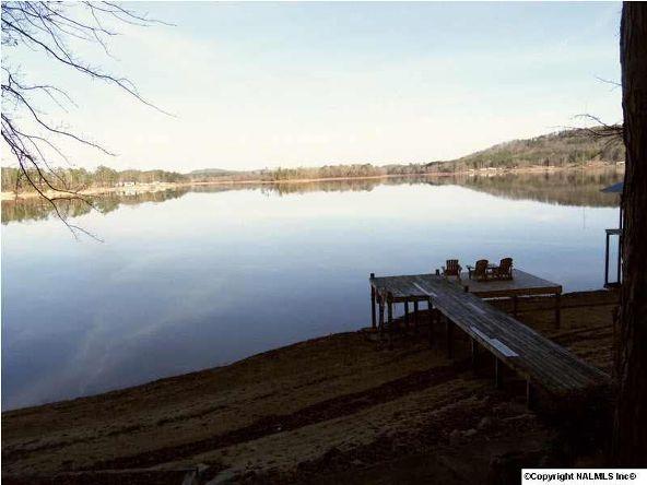 160 County Rd. 917, Leesburg, AL 35983 Photo 16