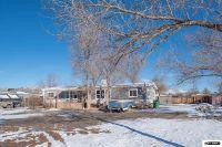 Home for sale: 20 Charjene Ct., Sun Valley, NV 89433