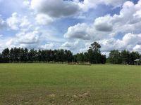Home for sale: Lot 2 101st St., Trenton, FL 32693