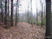 Home for sale: 245 Bennett Springs Ln., Craigsville, VA 24430