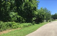 Home for sale: 0 Mill Creek Dr., Jasper, GA 30143