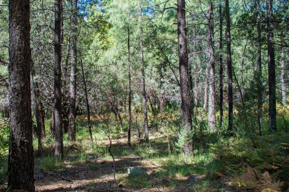 535 N. Rim Trail Rd., Payson, AZ 85541 Photo 2