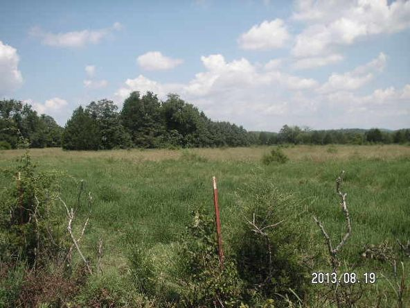 40 Acres M/L, Clarksville, AR 72830 Photo 8