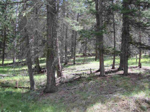 119 W. Pecos Canyon Estates Rd., Tererro, NM 87573 Photo 34