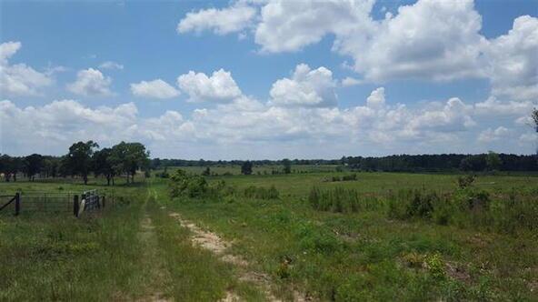 Tbd County Rd. 40, Coffee Springs, AL 36318 Photo 31