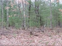 Home for sale: Lot 6 Ice Rd., Webb Lake, WI 54830